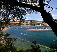 River Teign View by Theresa Elvin