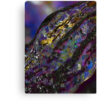 Water mystery Canvas Print