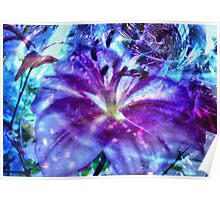 magical blossoming in the night Poster