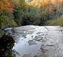 Over The Falls on Tinkers Creek by Linda Gleisser