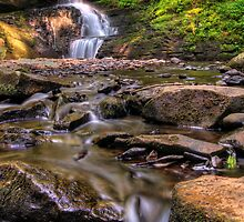 Bridesmaid Falls at Bushkill by Michael Mill