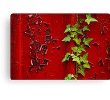 Peeling Ivy Canvas Print