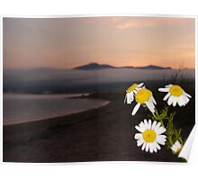 Lakeshore Floral Poster