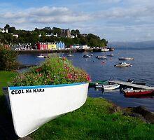 Tobermory, Isle of Mull Scotland by youmeus