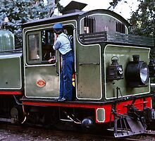 Puffing Billy at Emerald 198005160017  by Fred Mitchell