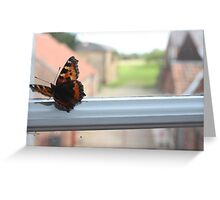Butterfly on the Window Greeting Card