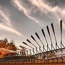 Pedestrian Bridge - Parramatta, Australia by Lynne Haselden