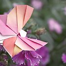 Butterfly (Origami) by rachomini