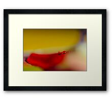 Brush stroke Framed Print