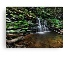Cayuga Falls in HDR Canvas Print