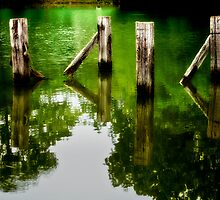 Old Pier Supports by Phillip M. Burrow