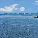 At the Confluence of the Mississippi and Ohio Rivers by barnsis