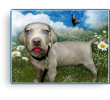 Pretty Poochie Out To Play Canvas Print