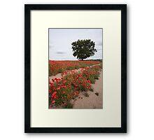Provence? Framed Print