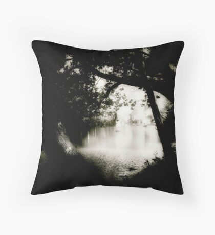 Creek and Crossing Throw Pillow