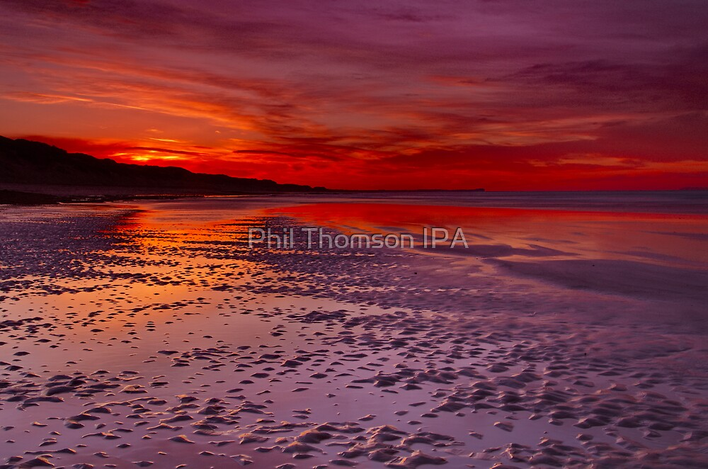 """""""Concerto"""" by Phil Thomson IPA"""