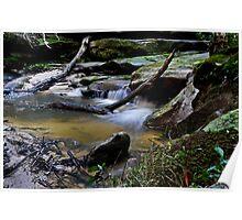 Little Falls, Debris, and Rocks Poster