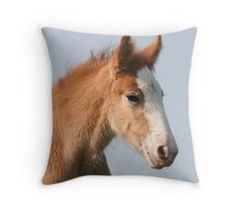 Clydesdale Foal Throw Pillow