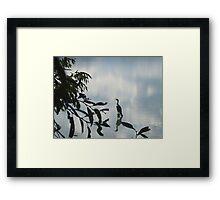 Heron at Crown Hill Framed Print