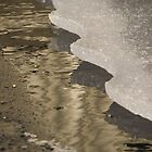Icy Lot by Kathi Arnell