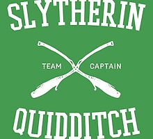 Hogwarts Quidditch Team: Slytherin by Ian A.