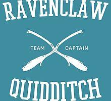 Hogwarts Quidditch Team: Ravenclaw  by Ian A.