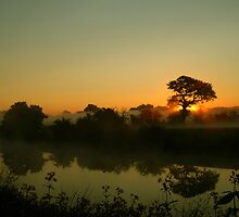 River Solitude by Simon Pattinson