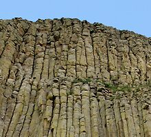 Climbing Devil's tower  by jhprints