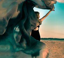 Carpe Diem by Elisabeth Ansley