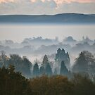 A Misty Winter's Morning - Cuckfield (8) by Matthew Floyd