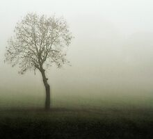 Loneliness by cameraimagery