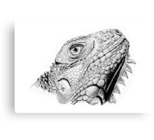 Iguana in Pen and Ink Canvas Print