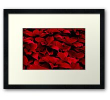 Knee Deep In the Red Framed Print
