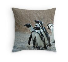African Penguins Throw Pillow
