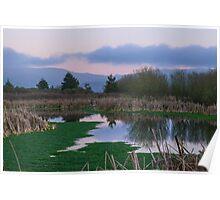 Arcata Marsh and Wildlife Sanctuary, Arcata, California, USA Poster
