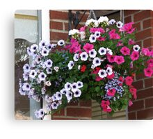 Pretty Hanging Basket Canvas Print