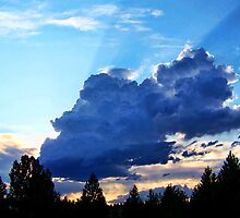 Rays of Hope by rocamiadesign