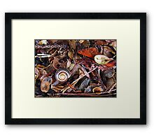 In His Element Framed Print