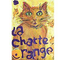 La Chatte Orange (mixed media) Photographic Print