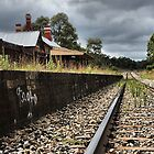 Capertee Rail - The Other Angle - NSW Australia by Bev Woodman