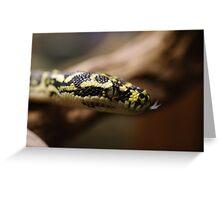 Diamond Python Greeting Card