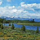Yellowstone National Park, Wy by Terrie Taylor