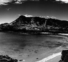 Diamond Bay Scene by Beau Williams