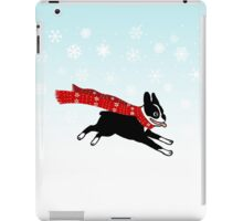 Holiday Boston Terrier Wearing Winter Scarf iPad Case/Skin