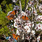 Tree Full of Happiness by Barb Leopold