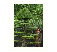 Vietnamese Soldier Hiding in the Topiary Art Print