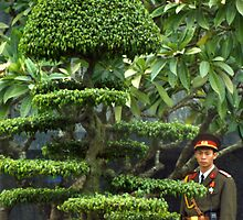 Vietnamese Soldier Hiding in the Topiary by Jane McDougall