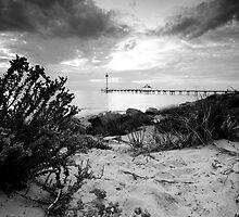 Brighton Beach by Elizabeth Tunstall
