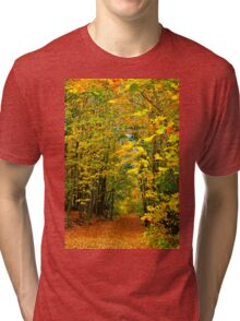 PATH TO AUTUMN COLOURS Tri-blend T-Shirt