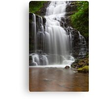 Scaleber Force. Canvas Print